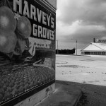 Harvey's Grove, Rockledge, FL, 2010