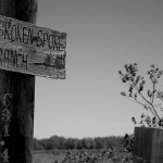 Broken Spoke Ranch, LA, 2009